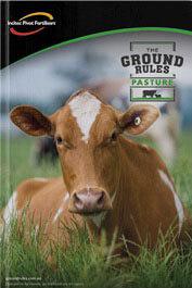 Brochure Download